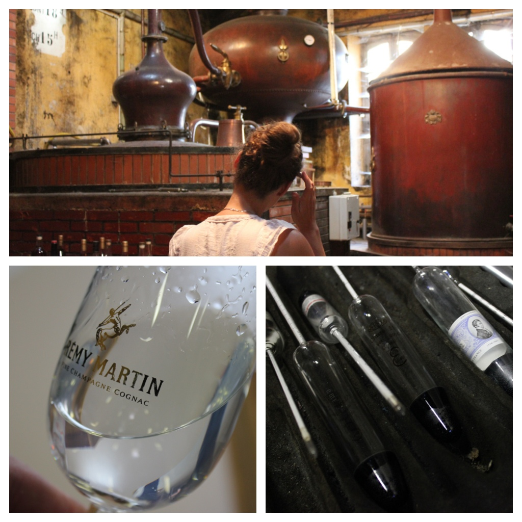 Pot still and fresh eau-de-vie