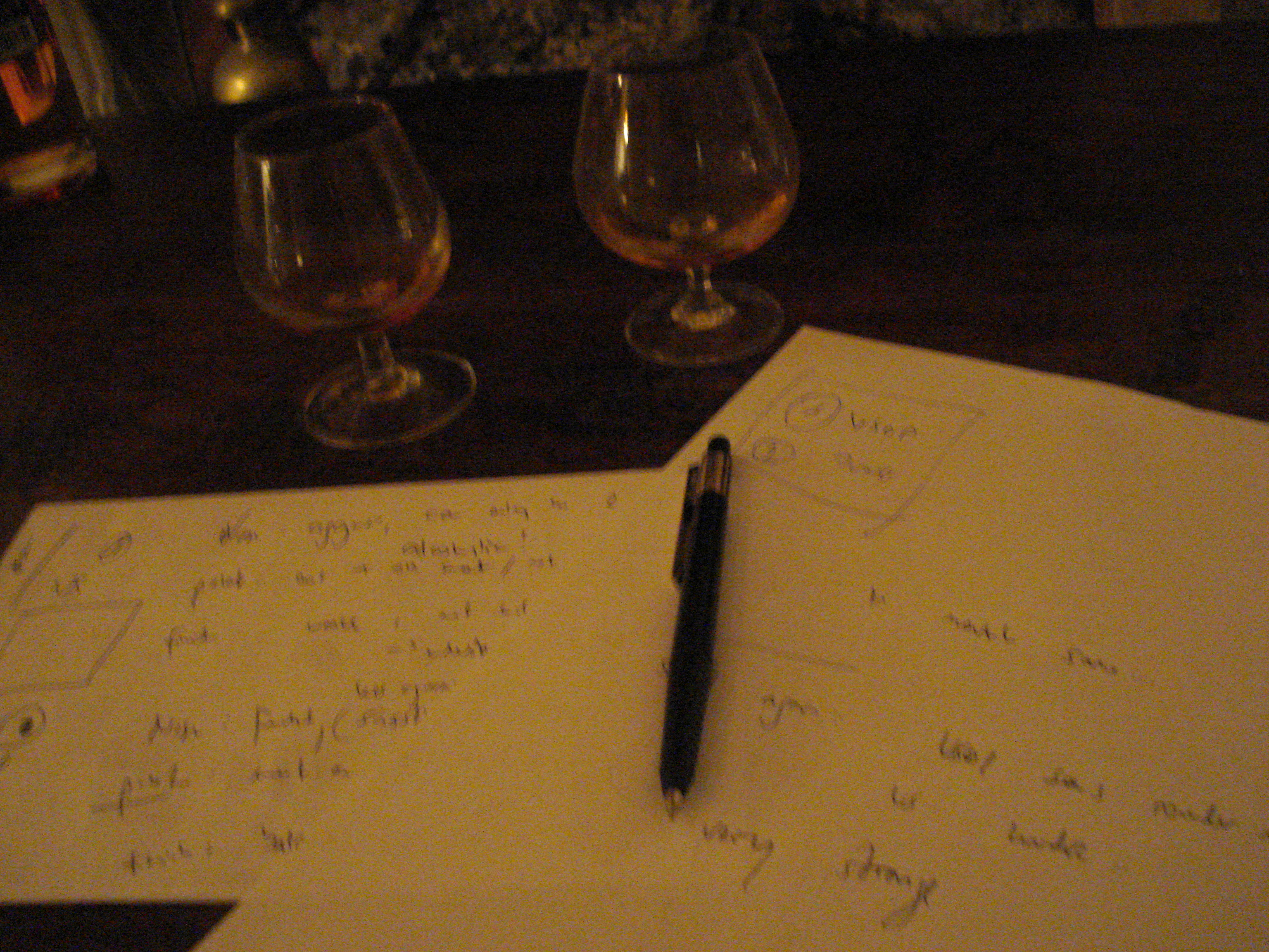 Cognac review in front of the fireplace - without the pad