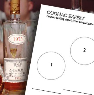 Cognac testing review
