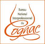 logo BNIC