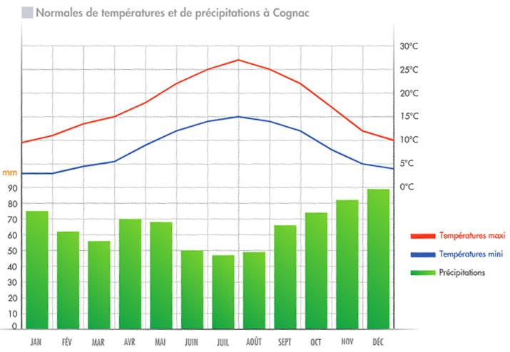 Temperature Cognac