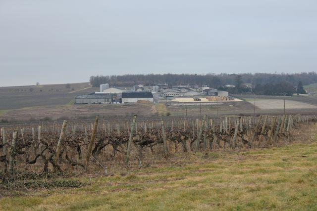 Domaine Boinaud cognac farm