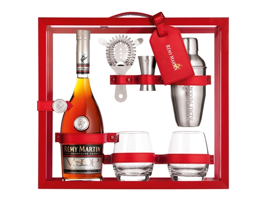 The Cocktail Expert Case Remy Martin