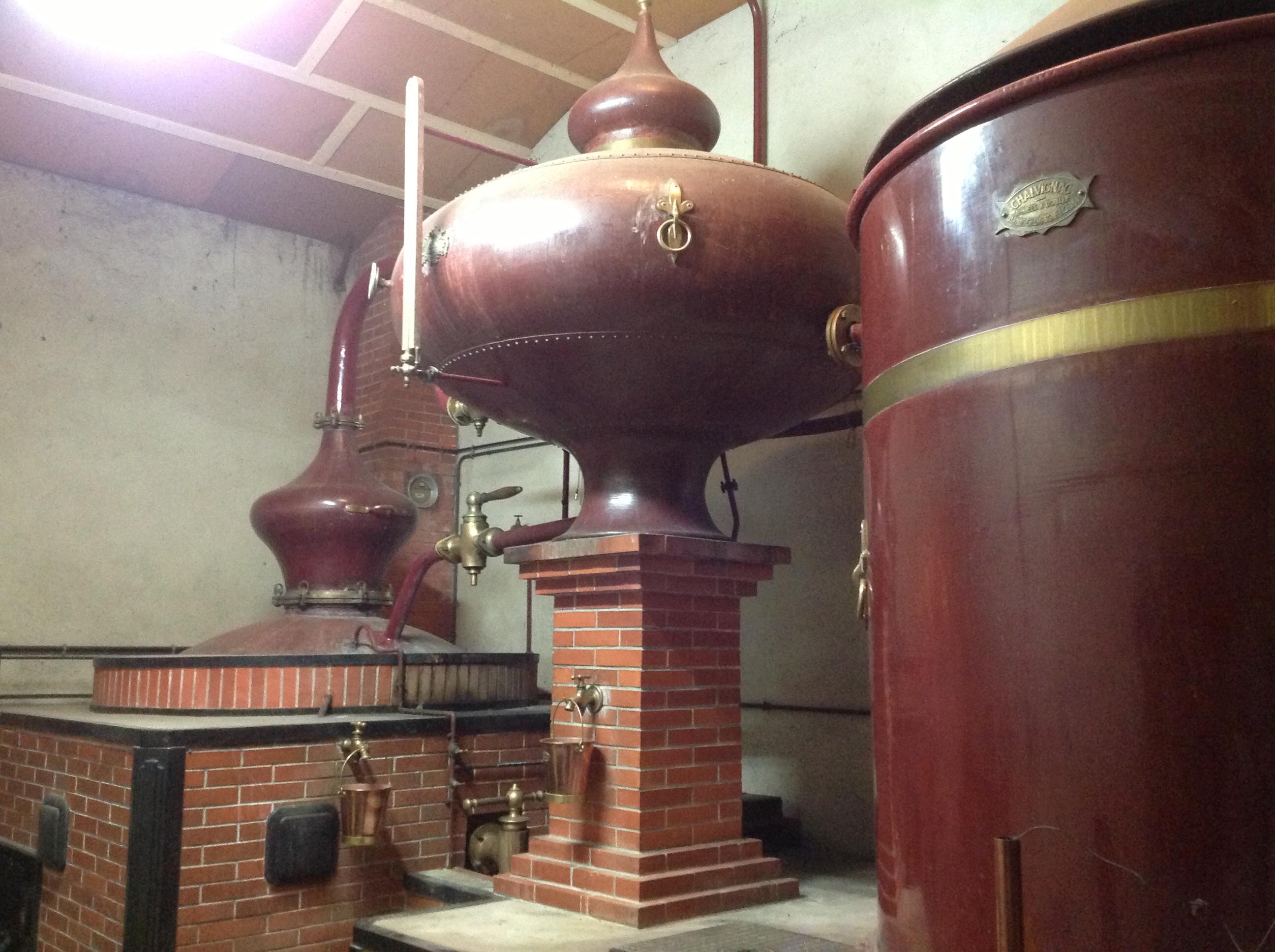 Cognac Region Charentaise