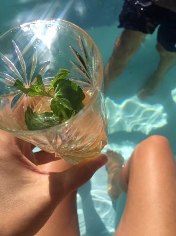 Sophie's Meukow Cognac Cocktails – from California!