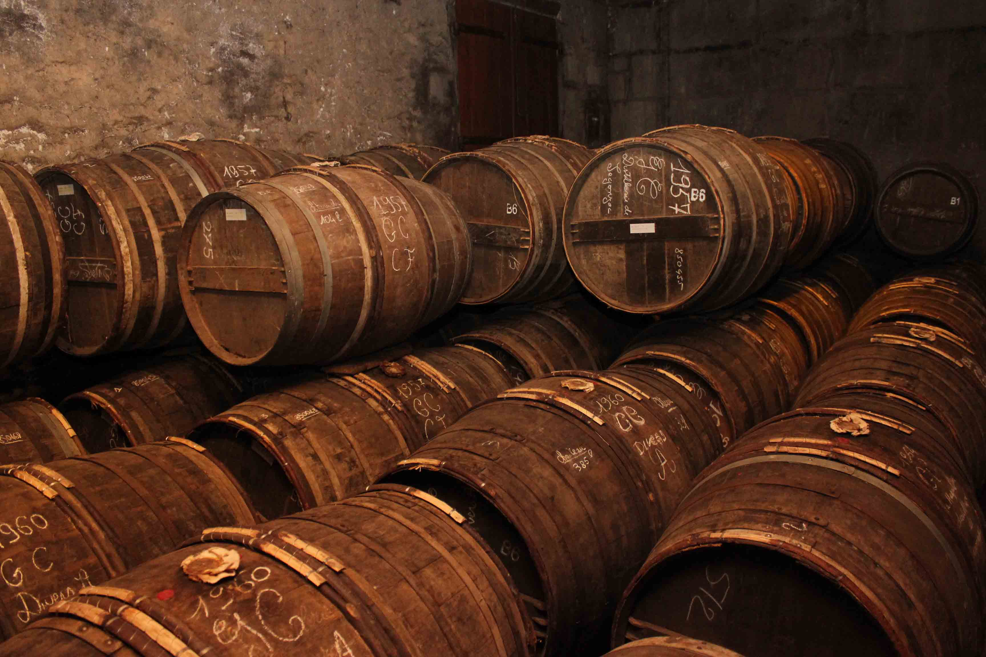 Top 10 Things To Do in the Cognac Region
