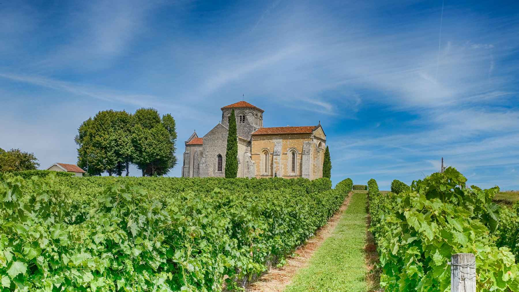The 6 Crus of Cognac: Growth Area and Region