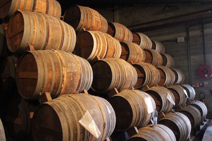Barrels in a Cognac aging cellar