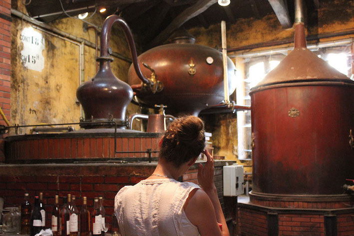 Copper alembics distilling Cognac