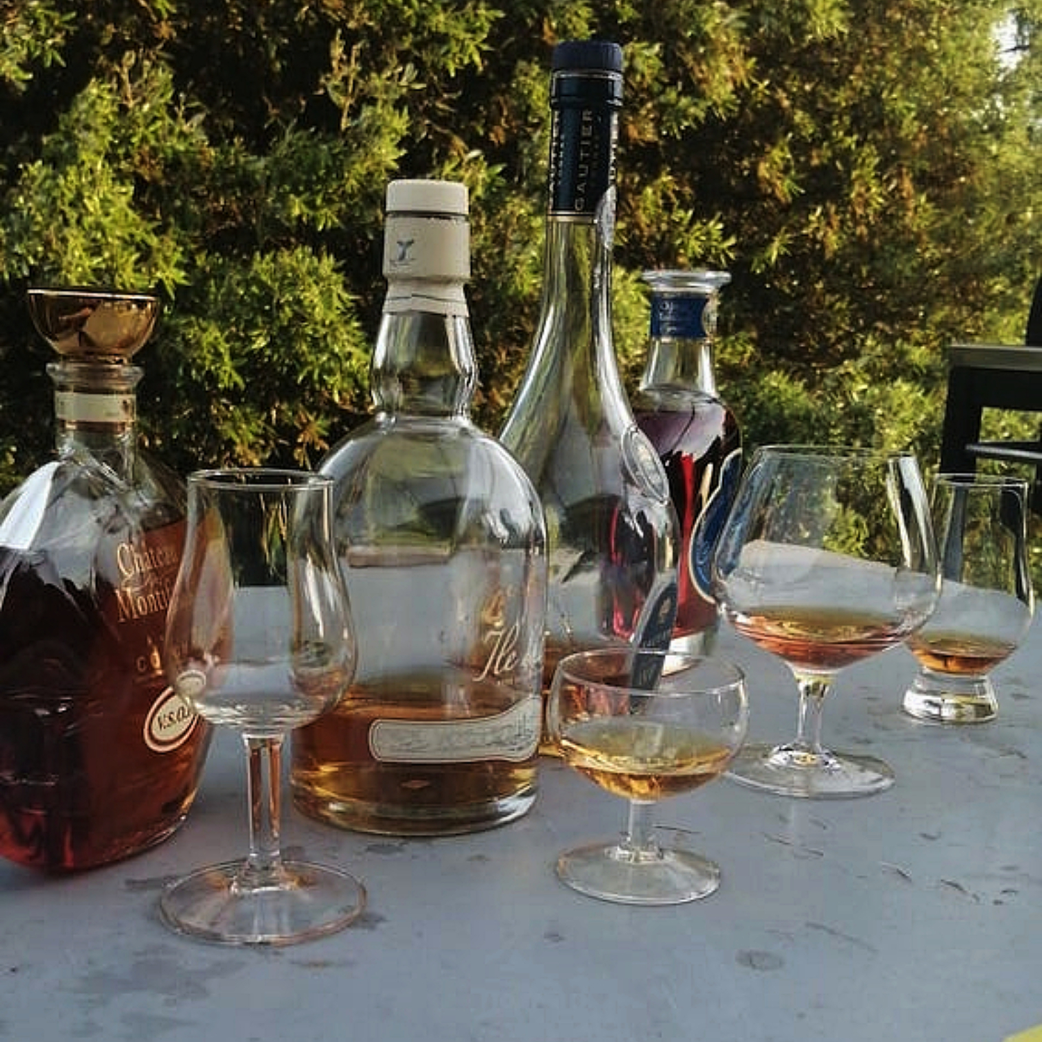 Cognac degustation with several different ones