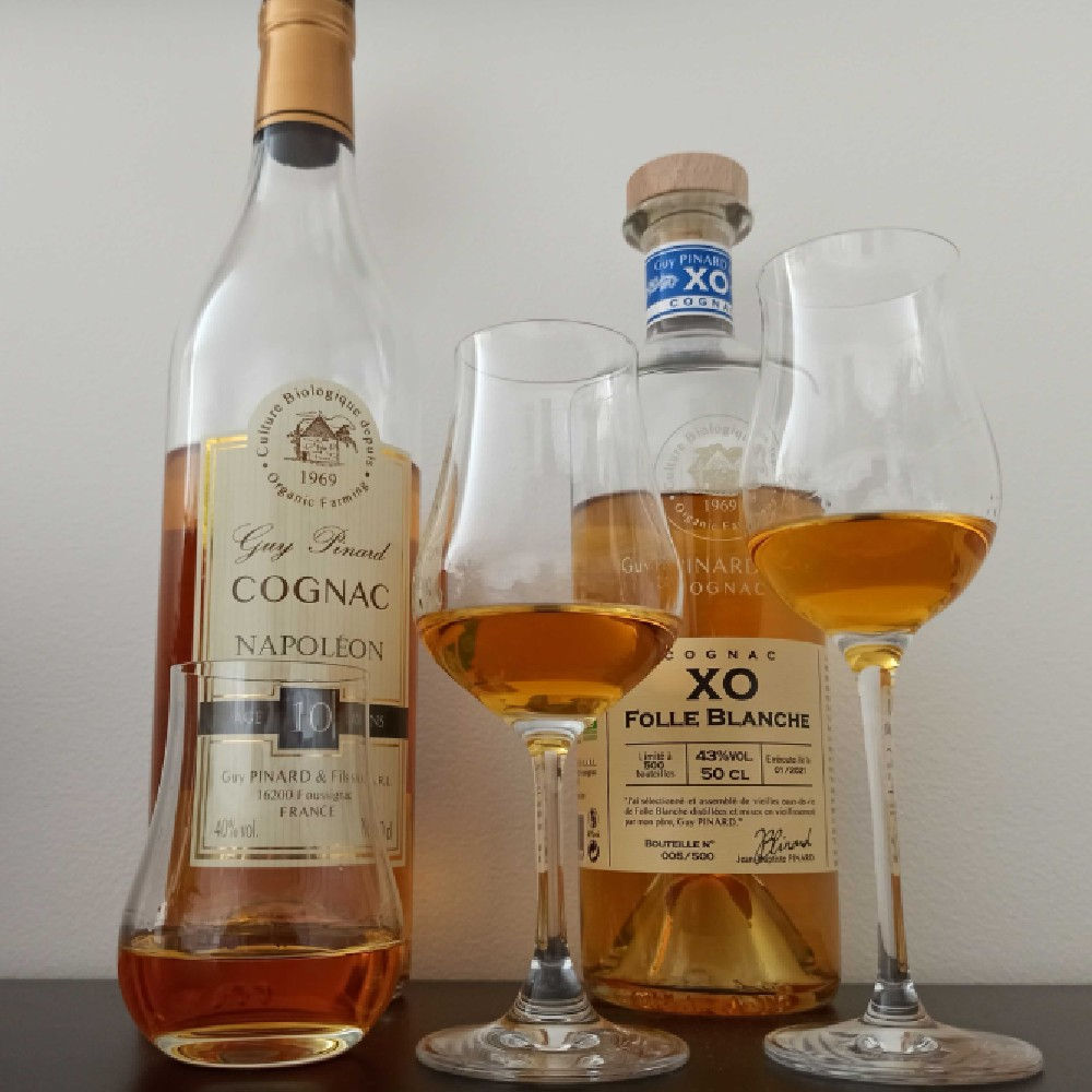 Degustagtion of Guy Pinard XO Folle Blanche and Napoleon Cognacs
