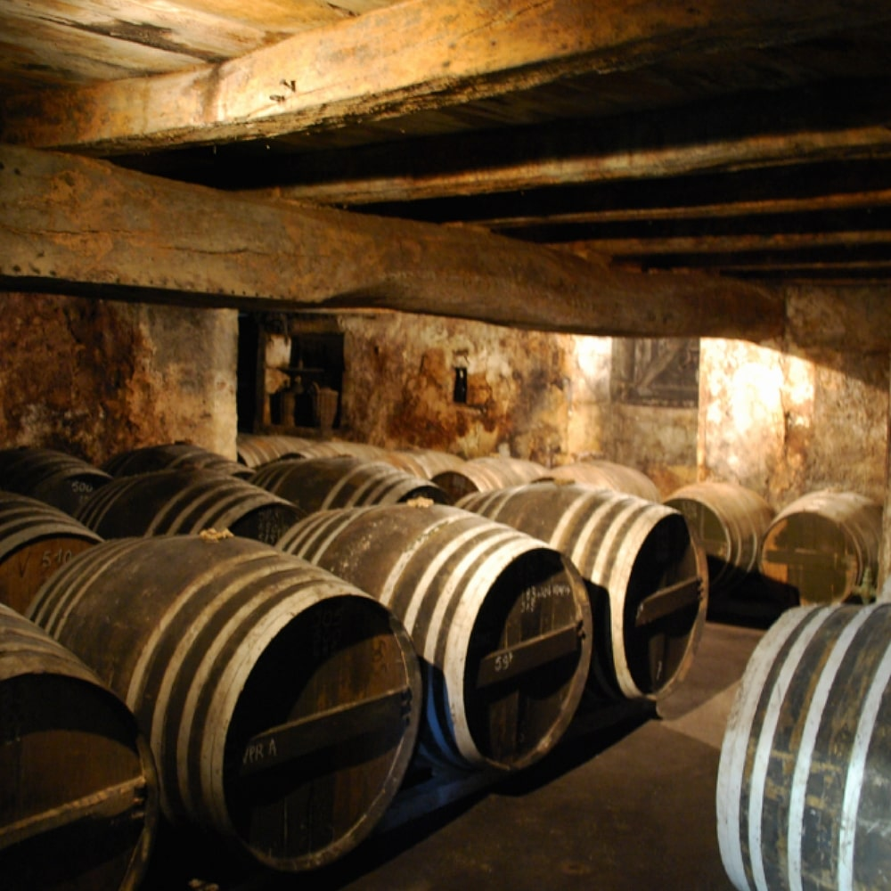 Cellar with barrels